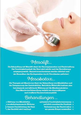 Werbeposter für Mesotherapie Behandlung, 2 Stck.