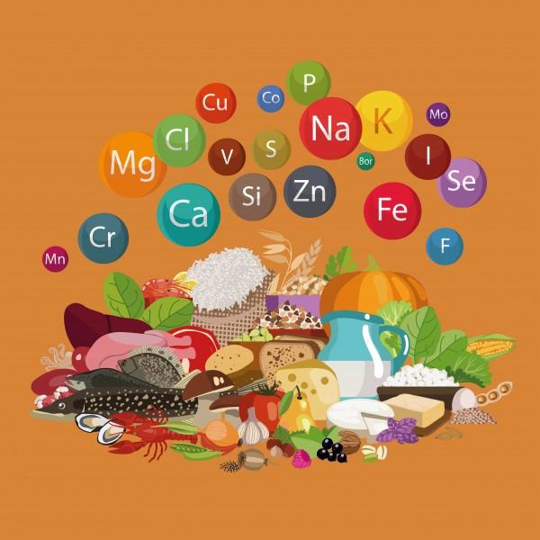 Home - Gesundheitscheck Smart Vitalstoff + Giftanalyse